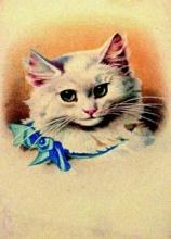Kostenlose Geburtstagsgrüße Mit Katzen